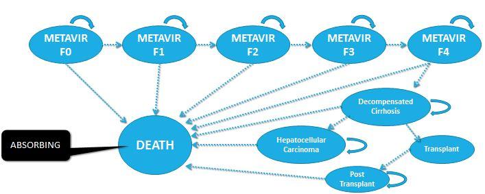 Markov model example-hepatitis c